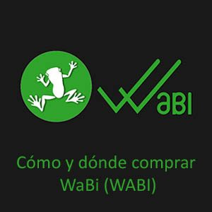 como-donde-comprar-wabi